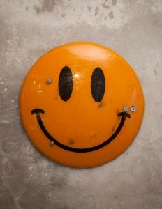 orange web 1